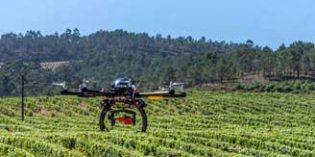 La tecnología robótica en el viñedo español se pone en marcha con el grupo Robodronvi