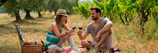 Tecnovino Rutas del Vino de Espana enoturismo