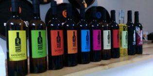La cadena Vino Vino prevé crecer en 2017 y abrir hasta 15 establecimientos