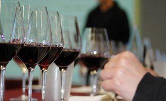 Outlook Wine