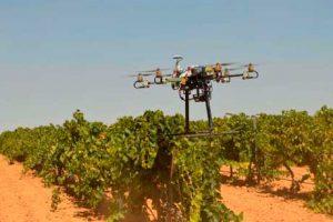 Tecnovino Bodega Iniesta viticultura de precision 1