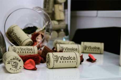 Tecnovino Corporacion Vinoloa