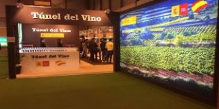 Vuelve el 23º Túnel del Vino al Salón de Gourmets, una oportunidad de catar los mejores monovarietales