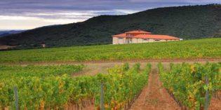 Así es la nueva bodega de Viñedos Barón de Ley en La Rioja
