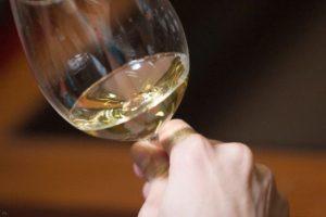 tecnovino catador en vinos italianos