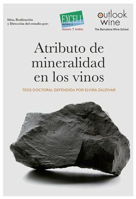 atributo de mineralidad en los vinos