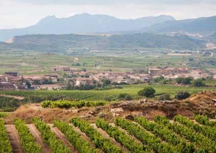 Tecnovino Abra vinos con origen