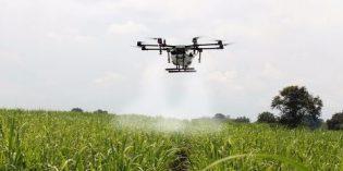 El Internet de las Cosas (IoT) irrumpe en el sector agrícola con prácticas herramientas