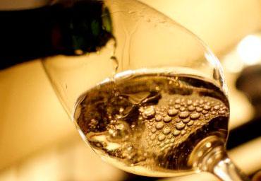Tecnovino servir el vino temperatura