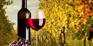 La D.O. Rioja es la más visitada entre los turistas enológicos