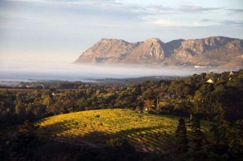 tecnovino-sudáfrica