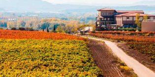 Bodegas Manzanos adquiere la marca Siglo y las de la Vinícola de Navarra