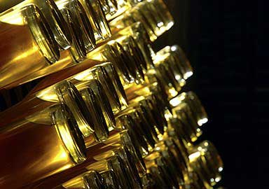 Tecnovino champagne Louis Roederer 4