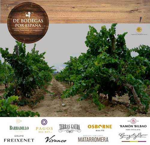 Tecnovino Cartel Spain through its wineries enoturismo