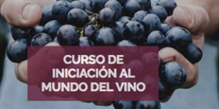 Curso de Iniciación al Mundo del Vino 2019 de la Escuela Superior de Hostelería Bilbao