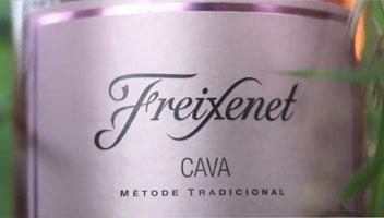 Tecnovino Guia de vinos 2018 OCU Freixenet Rosado