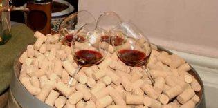 El Gobierno destina más de 1.000 millones de euros al Programa de Apoyo al sector vitivinícola español