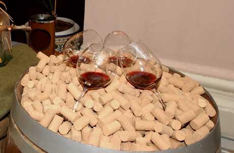 Tecnovino apoyo al sector vitivinicola espanol