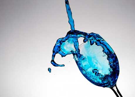 Tecnovino preferencias en el consumo de vino vino azul