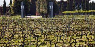 El Grupo Terras Gauda se expande hasta La Rioja con la adquisición del 75% de Finca Egomei