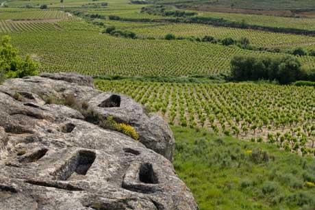 Tecnovino Ruta del Vino de Rioja Alta necropolis