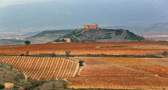 Tecnovino Ruta del Vino de Rioja Alta paisaje 2