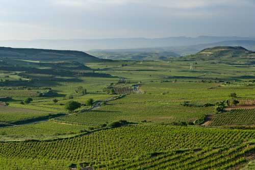 Tecnovino Ruta del Vino de Rioja Alta paisaje