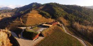 El rescate de la bodega Perinet posiciona sus vinos en el mercado norteamericano