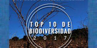 El Top Ten de la diversidad biológica en el viñedo de las bodegas españolas