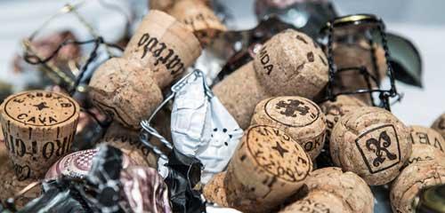 Tecnovino Concurso Internacional de Vinos Bacchus 2018 4