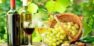 ESAH lanza un curso de viticultura que se centra en el estudio de la uva como clave del vino