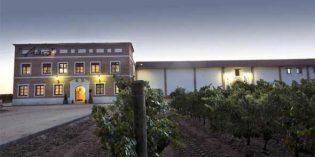 Sogrape refuerza su posición en España al adquirir Bodegas Aura a Pernod Ricard
