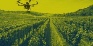 El uso de drones en el viñedo le ha permitido a Bodegas Lahoz mejorar la productividad en un 12%