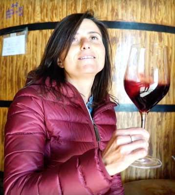 Tecnovino vinos con nombre de mujer Elena Pacheco