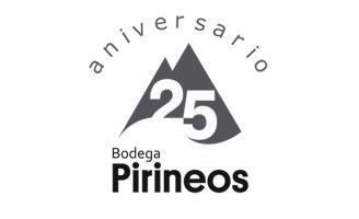 Tecnovino Bodega Pirineos exterior