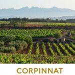 Nace Corpinnat, una nueva marca de vinos espumosos de calidad elaborados en el Penedés