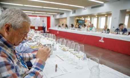 Tecnovino blancos de Rioja