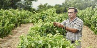 La Rioja Alta, S.A. dedicará 16 hectáreas de sus viñedos a la viticultura ecológica
