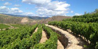 Valdeorras, un pequeño gran tesoro en la entrada de Galicia