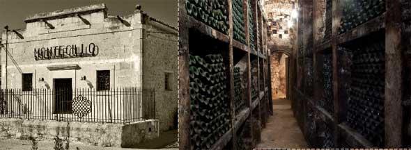 Tecnovino Montecillo Fuenmayor fachada botellero