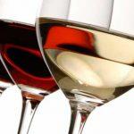 Tendencias de las exportaciones mundiales de vino: ¿quién vende, compra y distribuye?