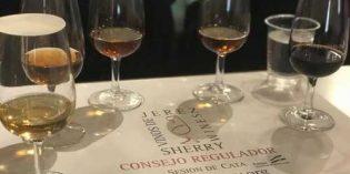La singularidad de los vinos de Jerez: velo de flor, oxidación, historia e innovación