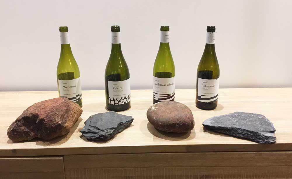 Tecnovino vinos de Valdesil gama y suelos