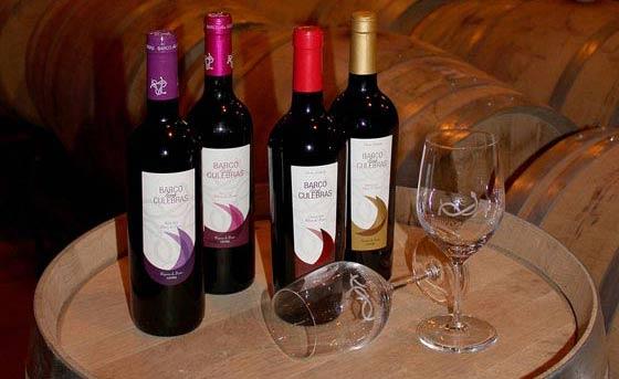 Tecnovino Barco las Culebras vinos