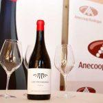 Los Escribanos, un tinto de alta gama de Vinos de La Viña y Anecoop Bodegas
