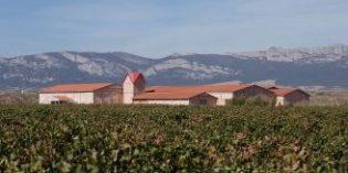 La nueva tendencia a la que se suma Familia Martínez Bujanda: analizar y valorar el suelo del viñedo