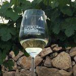 Valdeorras es viticultura ancestral, esencia atlántica y variedades y suelos singulares