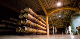 Bodegas Vicente Gandia aumentó sus ventas un 18% en 2017
