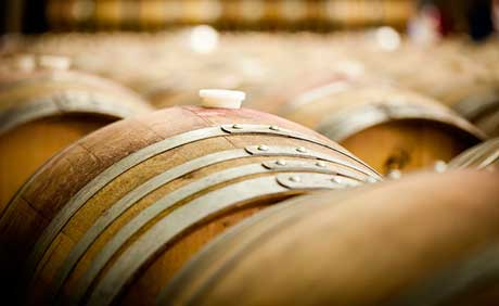 Tecnovino productos vitivinicolas de Espana OeMv
