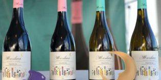 El cambio integral de los vinos Mariluna Blanco y Tinto: nuevas variedades e imagen